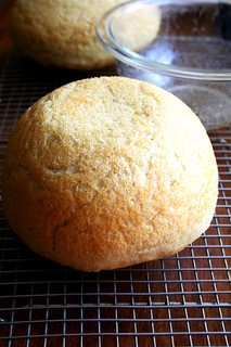 Peasant Bread from Bread Toast Crumbs