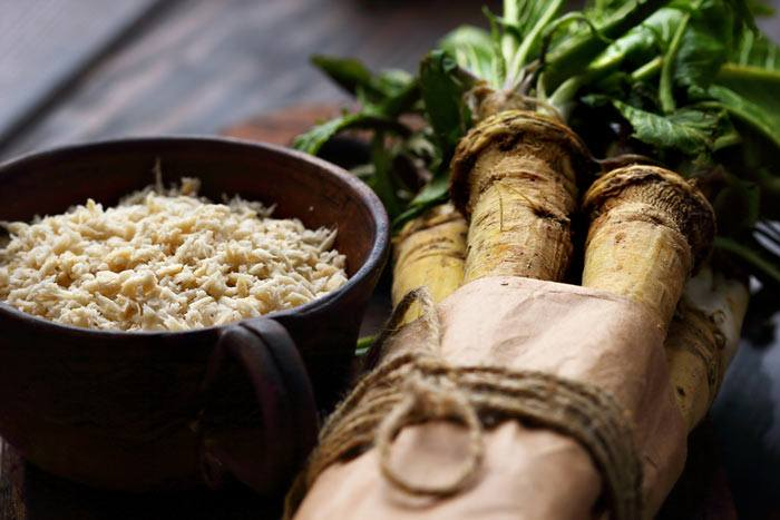 how to grow horseradish root 1