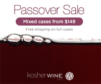 pesach wine sale banner 200X167