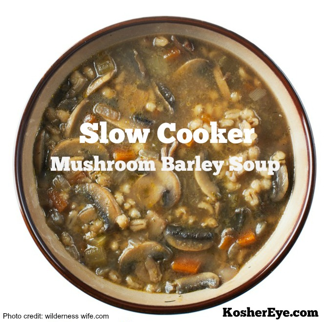 slow cooker texted mushroom soup2 e