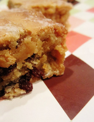 Rum_raisin_bars_sm