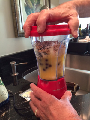 Smoothie_blender_300w