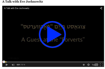 Video_talk_with_Eva_Jochnwitz_play