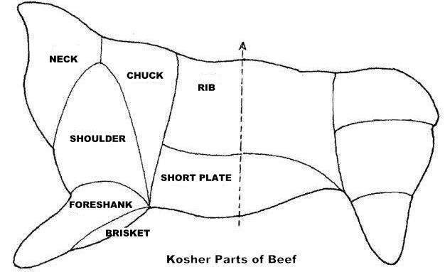 kosher beef diagramcr1