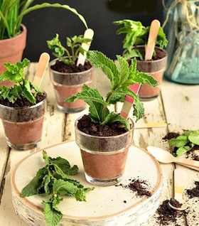 no_bake_indiv_flower_pot